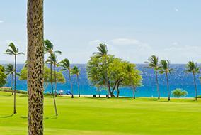 Palm Beach Golf & Country Club Real Estate