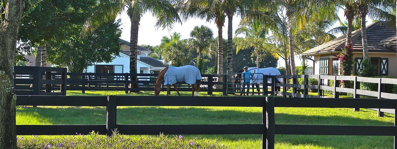 The Equestrian Club in Wellington Florida