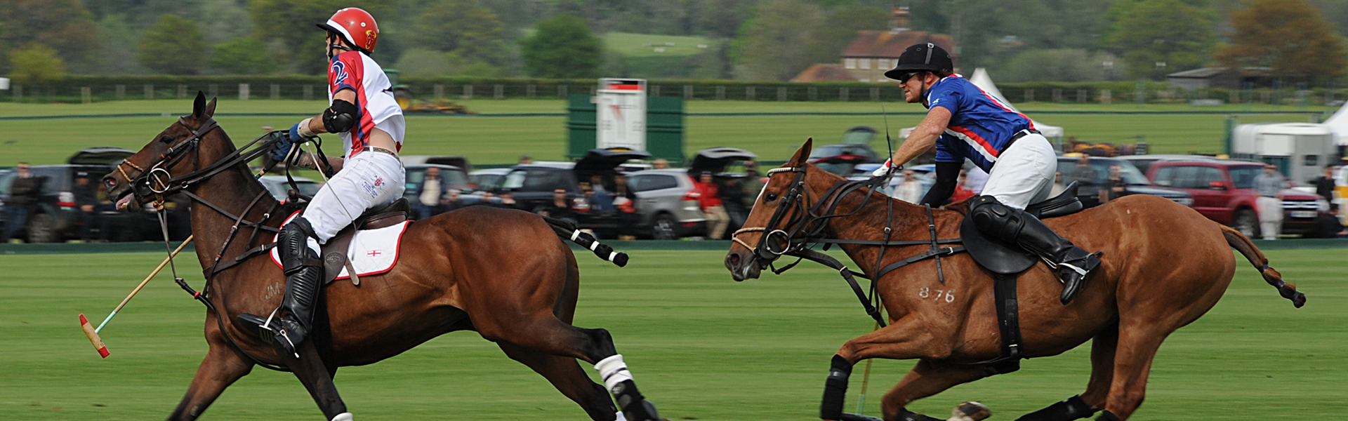Wellington Polo Image